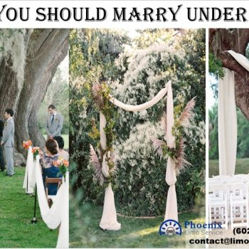 Tree Symbolism: Marrying by Your Celtic Roots